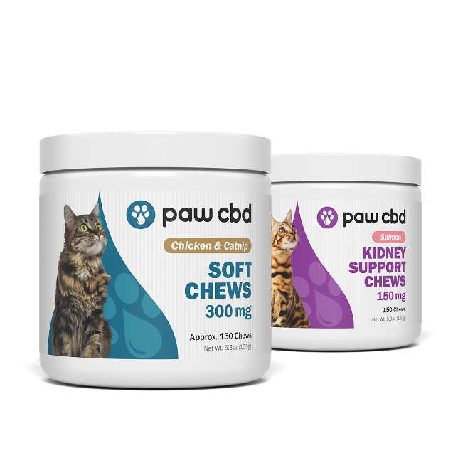 CBD Soft Chews for Cats for Sale - Bag